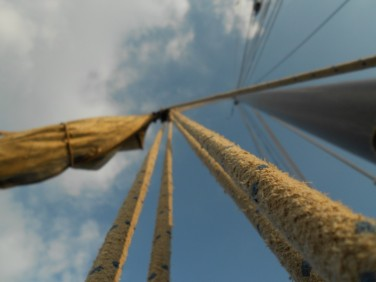 Seile und Taue