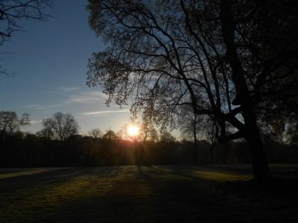 sonnenaufgang im park an der ilm