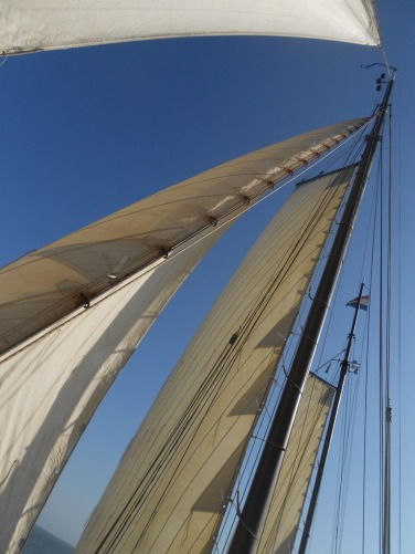 wind in den segeln