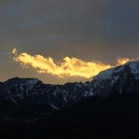 Morgendrache & Zauberwald